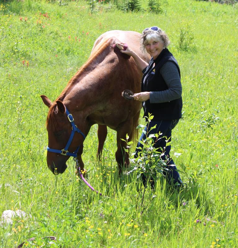 Image #1(Healing With Horse)