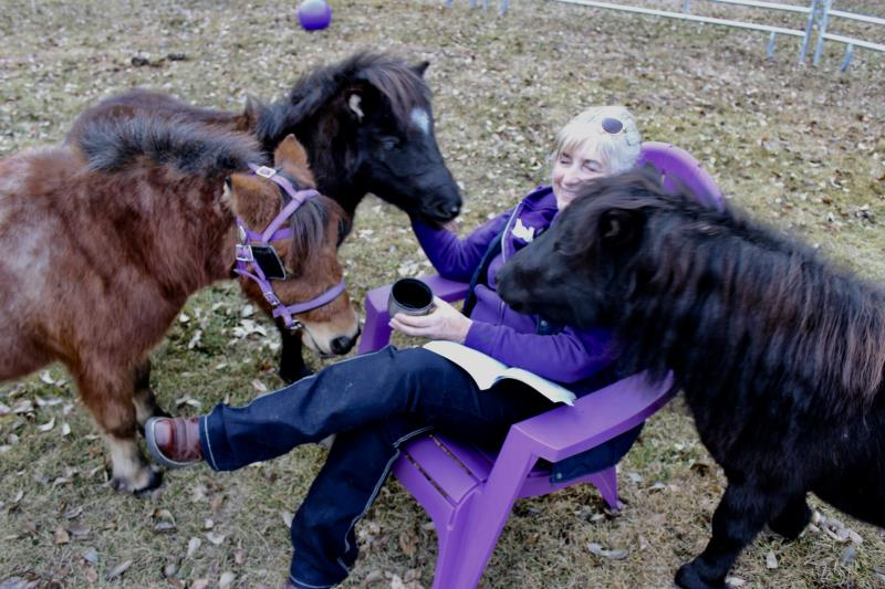 Image #0(Welcome New Herd Members)